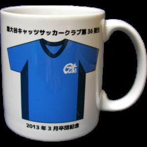 南大谷キャッツサッカークラブ卒団記念