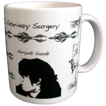 Veterinary Surgery2