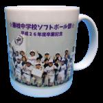 藤枝中学ソフトボール部