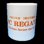 FC REGATE2