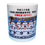 北海道札幌西陵高等学校野球部